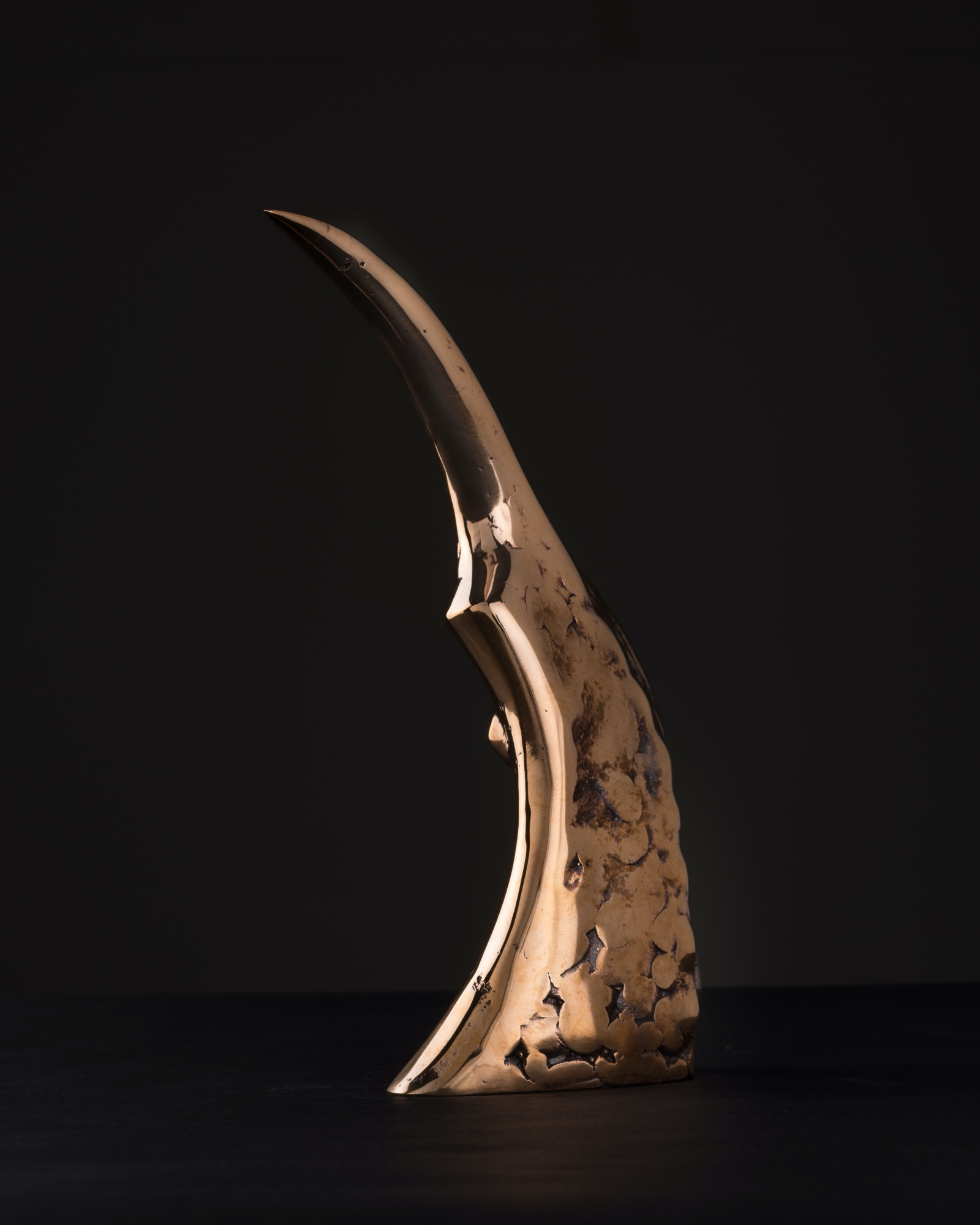 JAKUB BACHORÍK Jednorozec - bronz, 20cm