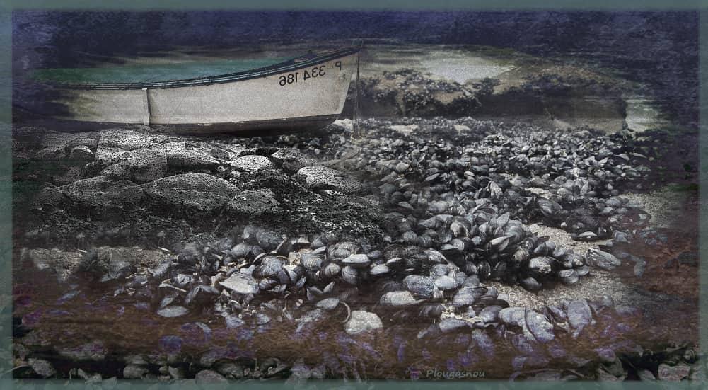 JAN LIPINA Plougasnou 4 s lodkou 32x60